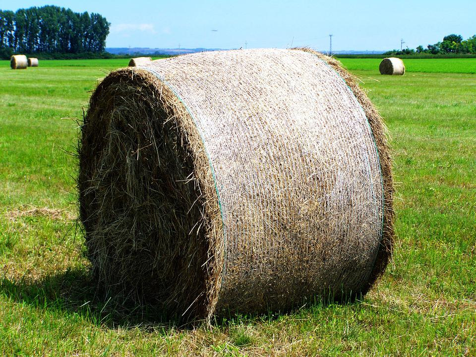 https://cdn.pixabay.com/photo/2016/07/21/19/46/hay-bale-1533403_960_720.jpg