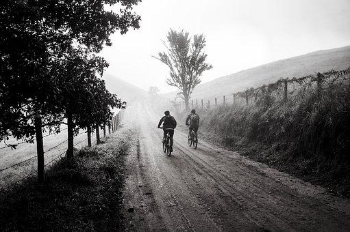 Bicicleta, Viagem, Amigos, Ciclismo