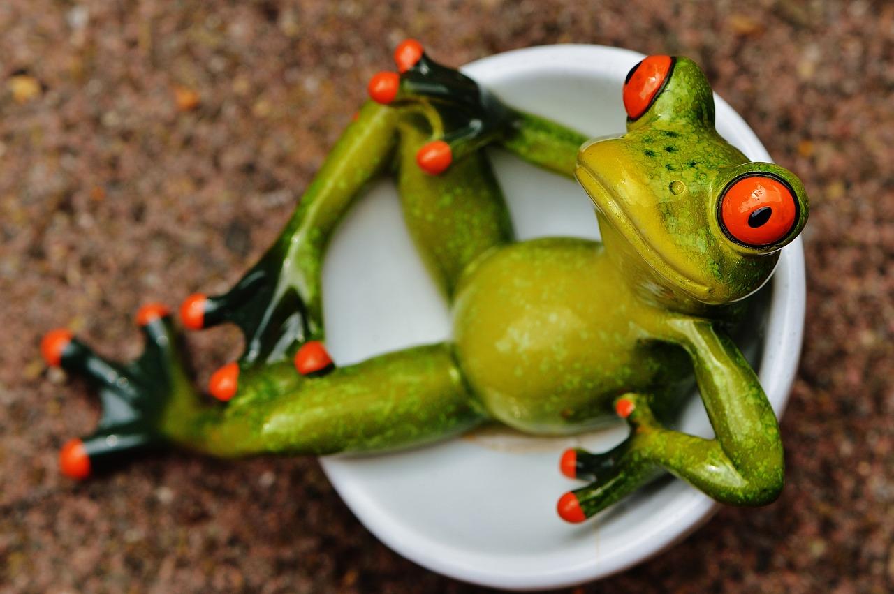 Стоит, картинки жаб смешные