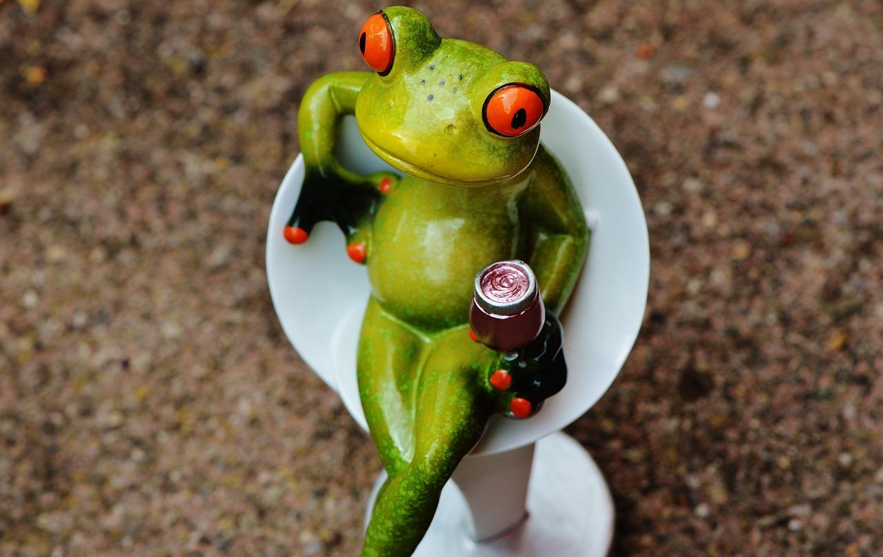 картинки лягушка пьет коктейль другими
