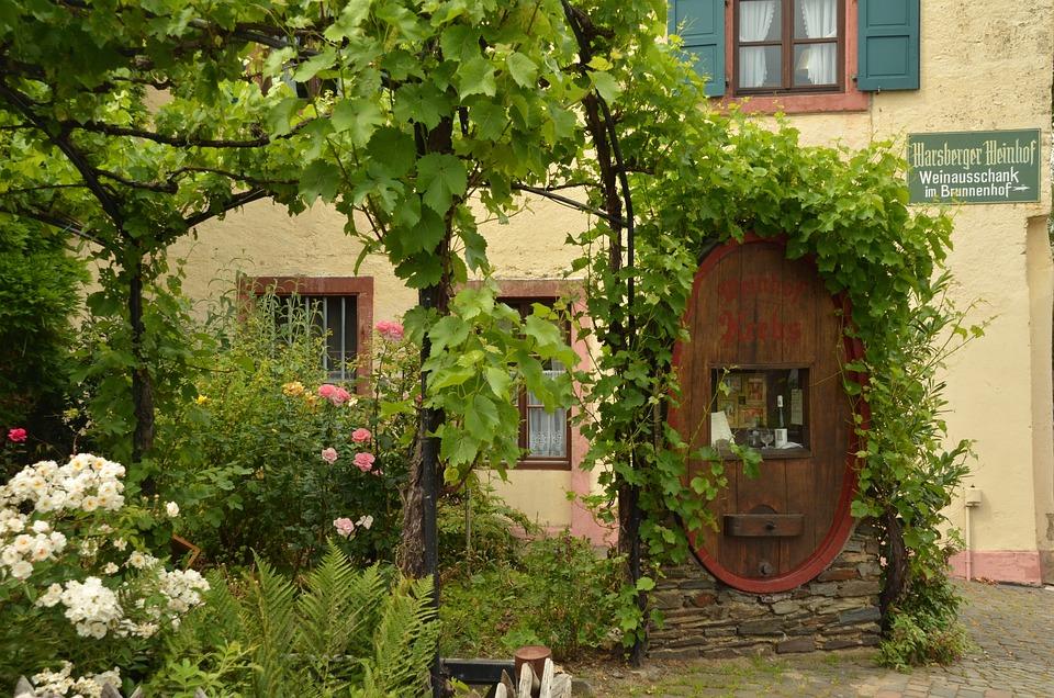 Ganz und zu Extrem Garten Traube Fass - Kostenloses Foto auf Pixabay @XZ_77
