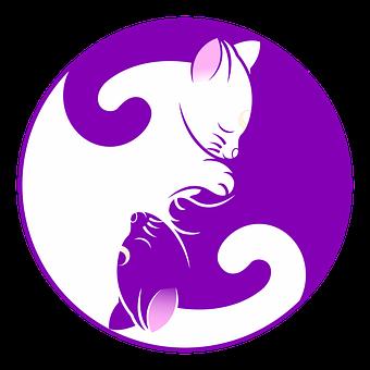 Cat, Yin Yang, Chaton, Symbole, Purple