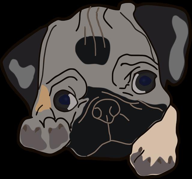 Dog Pug Pet · Free image on Pixabay