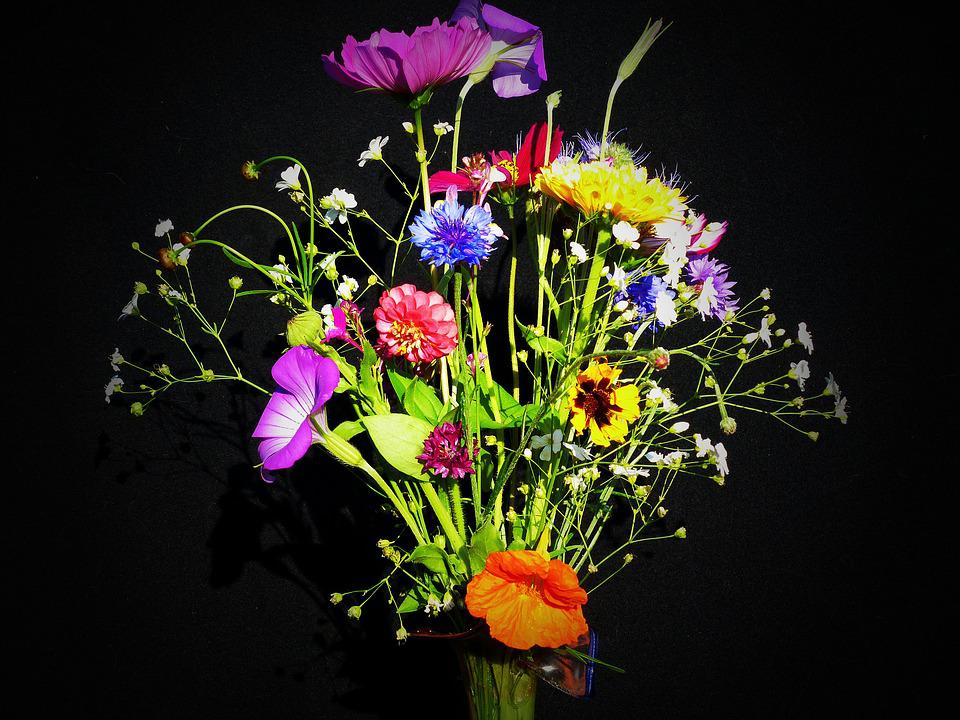 Free Photo Birthday Bouquet Wildflowers Free Image On