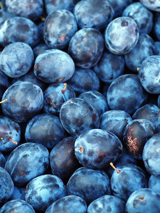 Free Photo Plum Fruit Texture Blue Purple Free