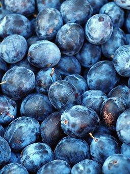 Plum, Fruit, Blue, Purple, Sweet, Plant