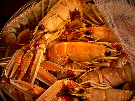 Shrimp, Meal, Dining, Seafood, Crayfish