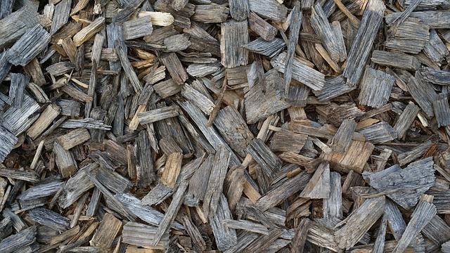 Gratis Billede: Træ, Træflis, Træ Baggrund