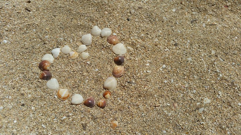 Shell Sand Heart Free Photo On Pixabay
