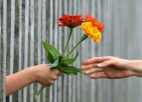 手, ブーケ, フェンス, ギフト, 与えます, 祝います, 関係, 喜び, 花