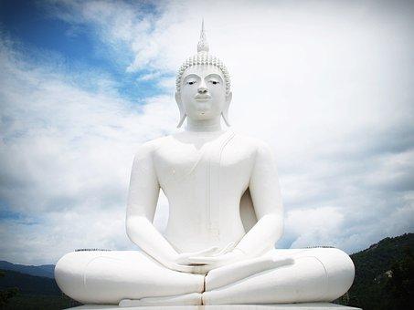 Buddha, India, Mind, Prayer, Concept