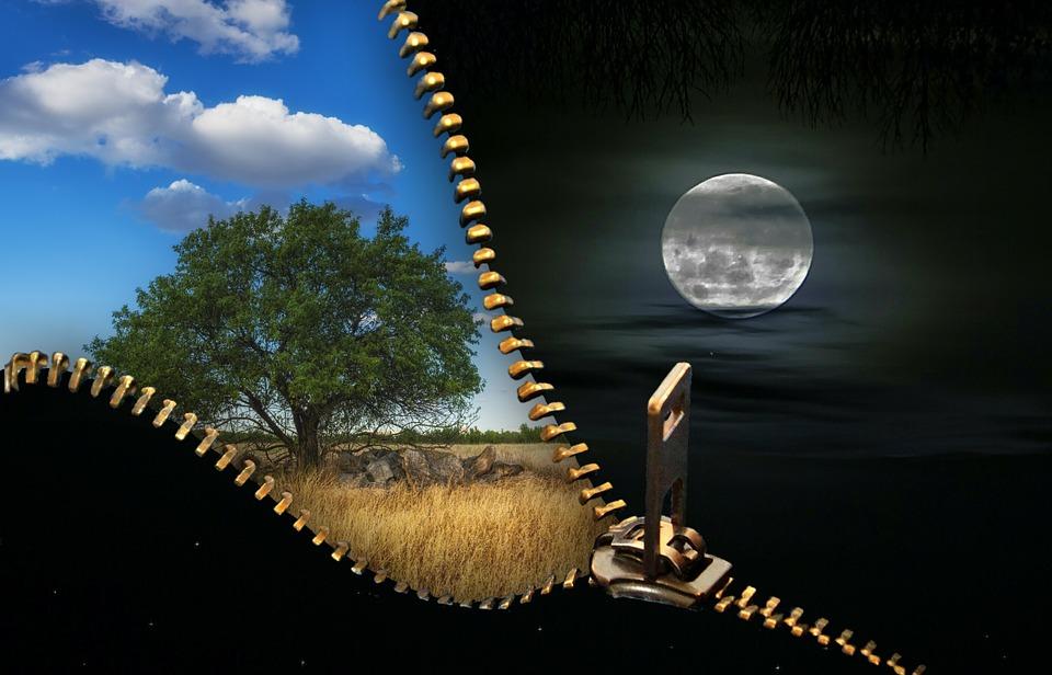 Сова и жаворонок жизнь в разных суточных ритмах