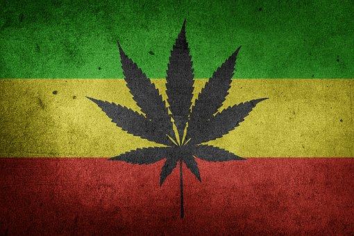 Marihuana, Cannabis, Unkraut, Hanf