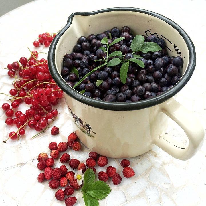 Berry, Mirtilli Organici, Natura, Mirtilli Selvatici