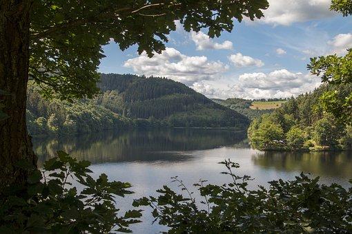Forest, Eifel, Germany, National Park