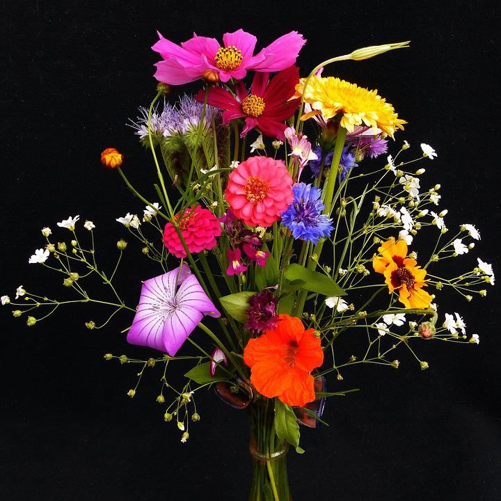 Top Photo gratuite: Bouquet D'Anniversaire - Image gratuite sur  YA37