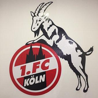 futbol alemania bundesliga