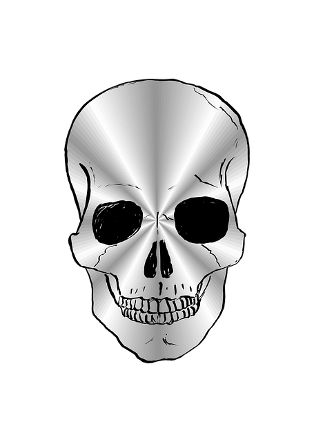 Free vector graphic: Skull, Silver, Silver-Plated