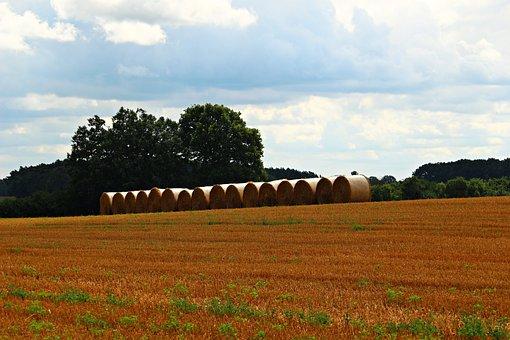 Straw Bales, Straw, Field, Harvest