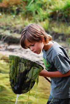 Fish, River, Boy, Water, Landscape