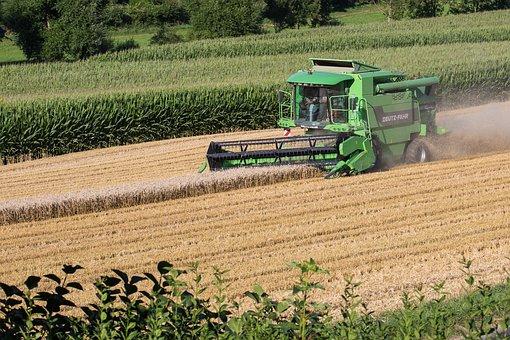 Combine Harvester, Harvest, Harvester