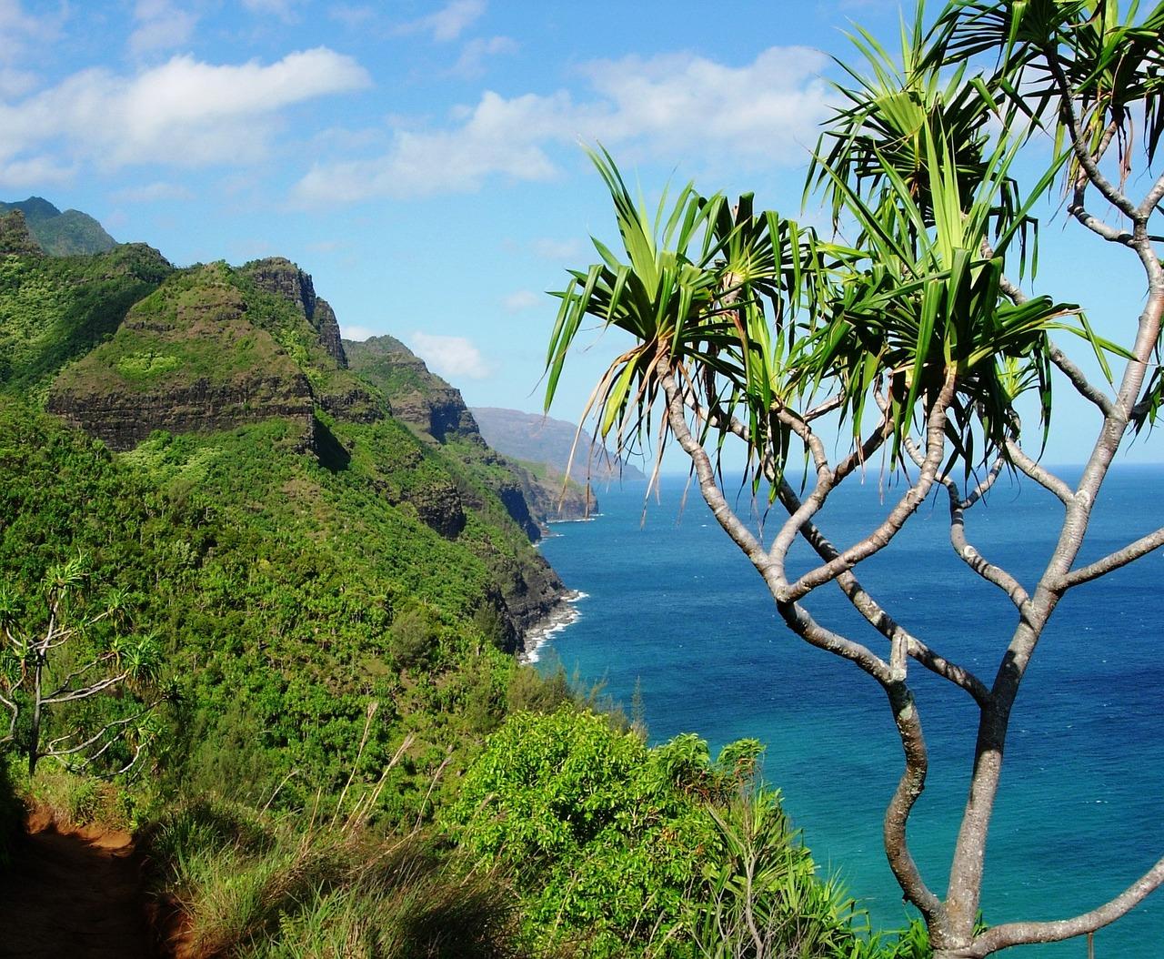 фото копки фото тропиков островов еще отказалась