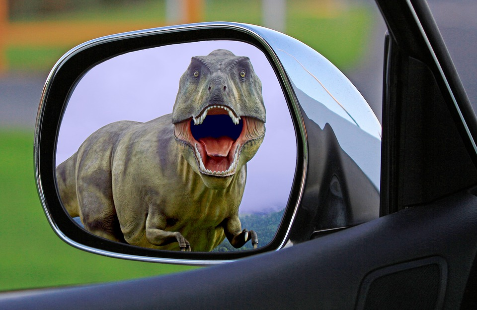 Dinosaur Mirror Wing Mirror Behind & Dinosaur - Free pictures on Pixabay Pezcame.Com