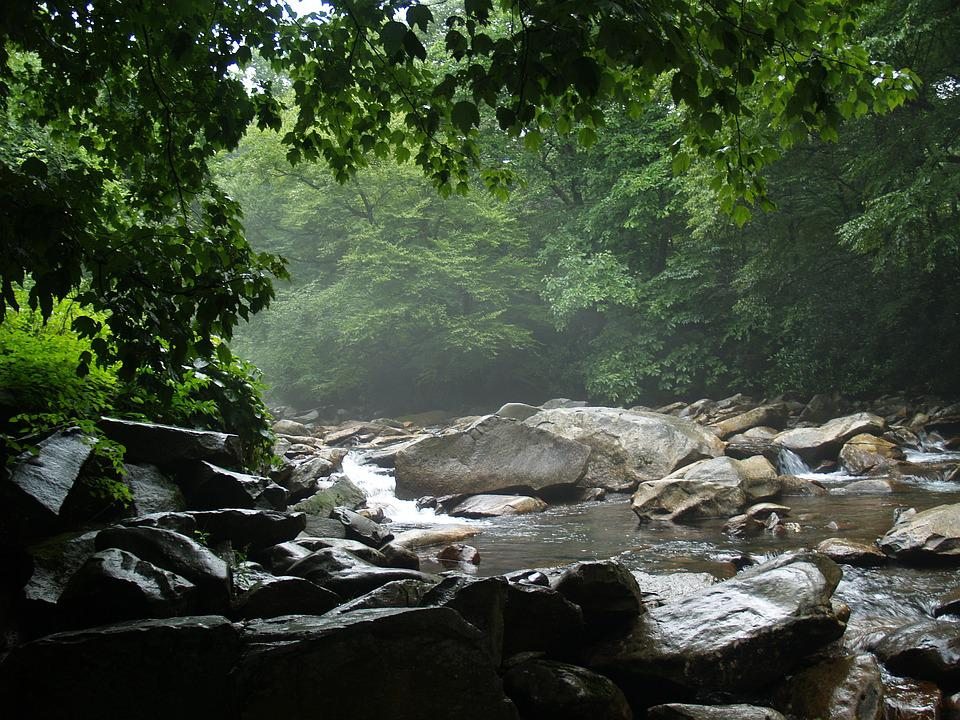 Free Photo Gatlinburg Tennessee Landscape Free Image