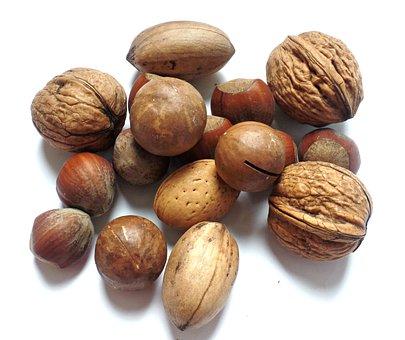 Nut Walnut Brazil Nut Hazelnut Brazil Nuts