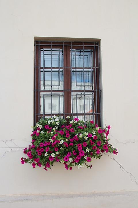 Fenster Blumenkasten Dekoration - Kostenloses Foto auf Pixabay