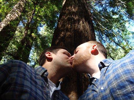 Casamento Gay, Amor, Beijo, Natureza