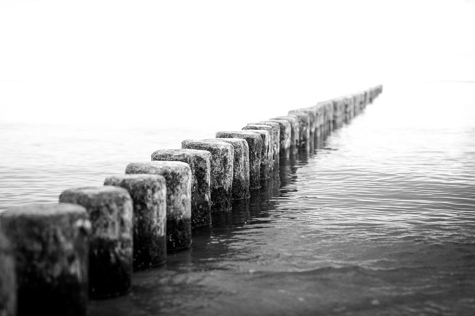 s w preto branco e foto gratuita no pixabay