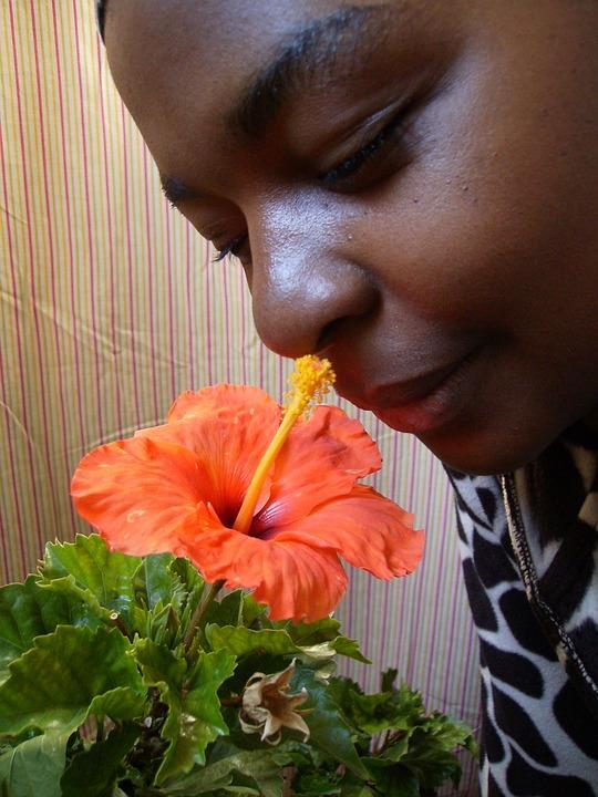 Kuvia Ebony naisia