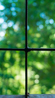 Windows, Square, View, Cross, Green