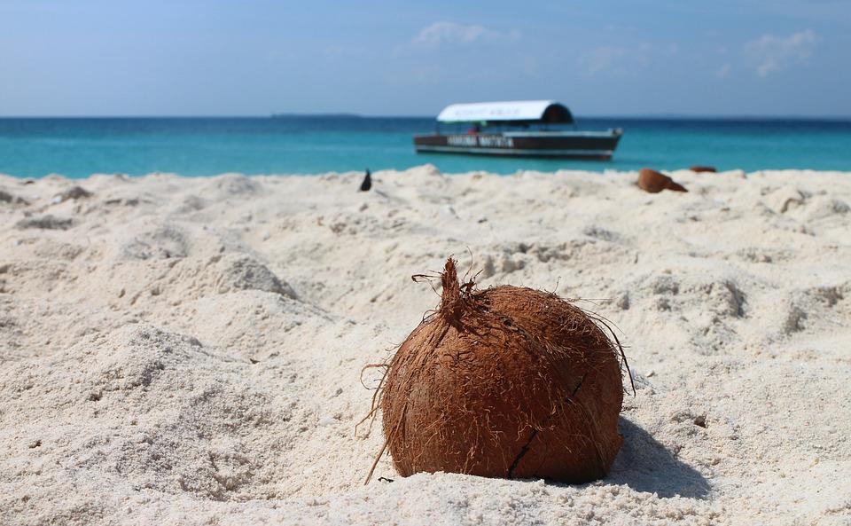 Noce Di Cocco, Spiaggia, Sabbia, Spiaggia Di Sabbia