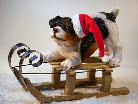 クリスマス, 犬, クリスマス犬, クリスマスの時期, メリー クリスマス