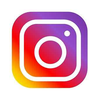 Image result for logo instagram