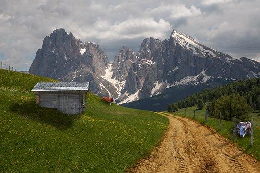 Almの, 高山, 牛, コラージュ, 牧草地, 小屋, 山, チロル