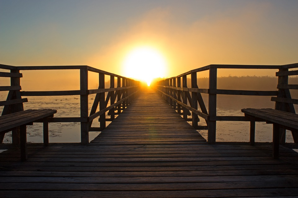 Sunrise, Light, Sun, Web, Natural Reserve