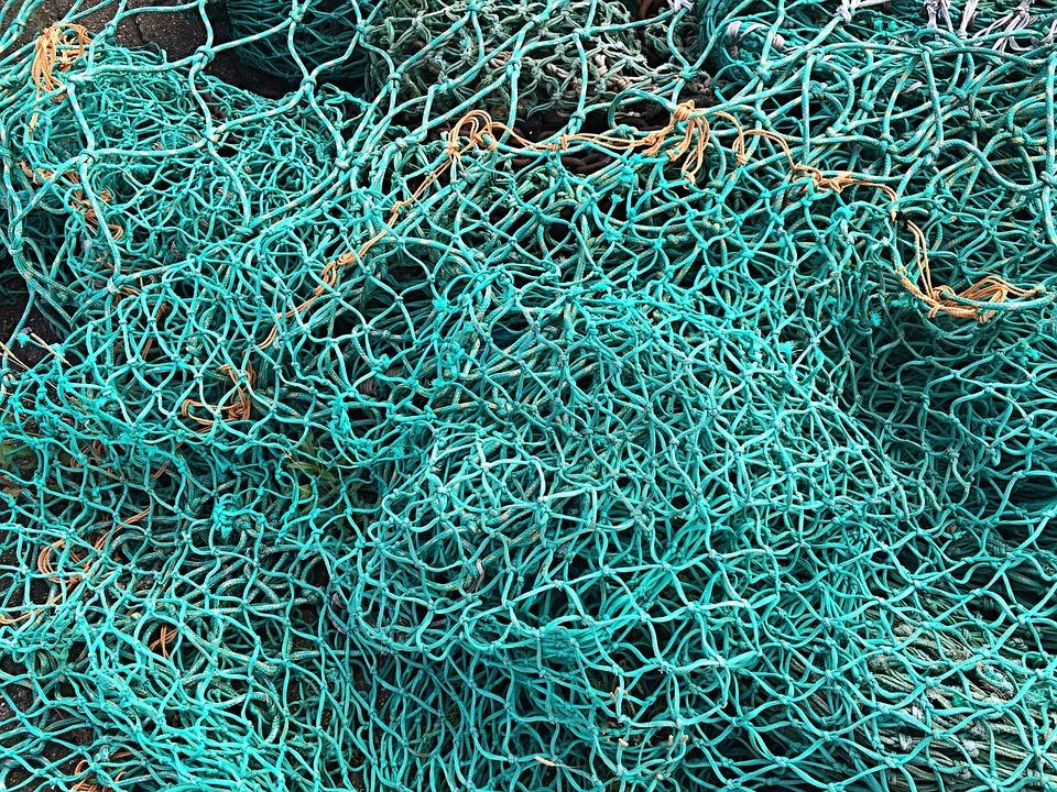 Free photo fishing net fish green fishing free image for How to make a fishing net