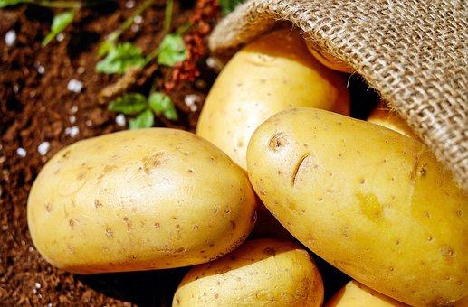 Potatoes, Vegetables, Erdfrucht, Bio