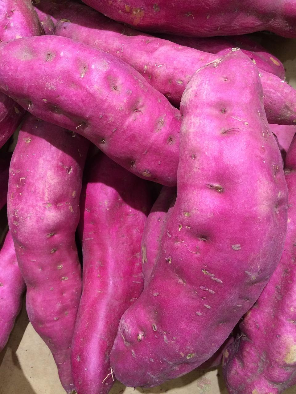 Sweet Potato Purple Seiyu Ltd - Free photo on Pixabay