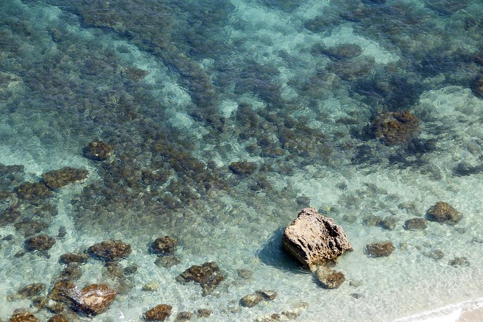 Calabria, Mare, Acqua, Barriera Corallina, Superficie