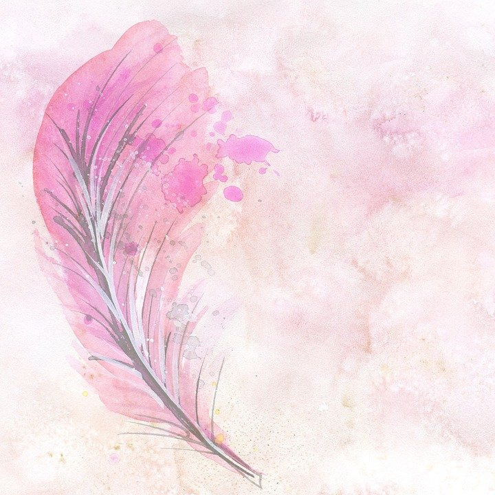 watercolor feather scrapbook 183 free image on pixabay