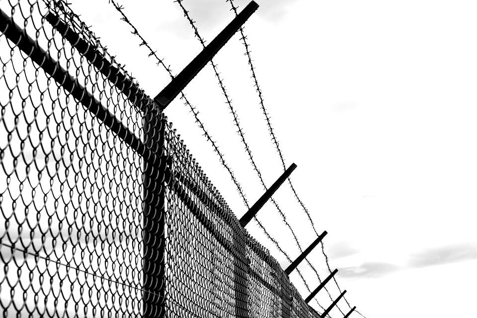 Barbed Wire Fence. Barbed Wire Fence O - Activavida.co