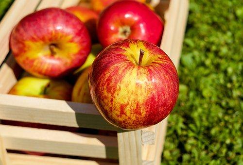 アップル, 赤, フルーツ, 熟した, 収穫, リンゴ箱