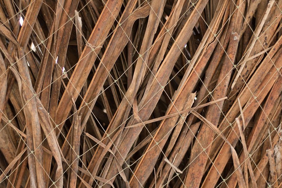 Textur Blätter Verdrahtung · Kostenloses Foto auf Pixabay