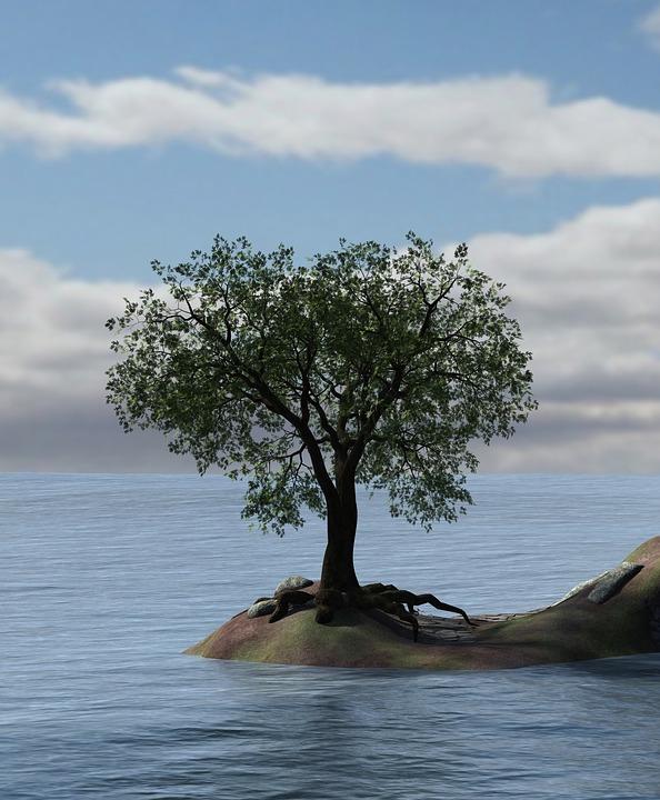 Free Illustration Heart Water Tree Island Sea Free