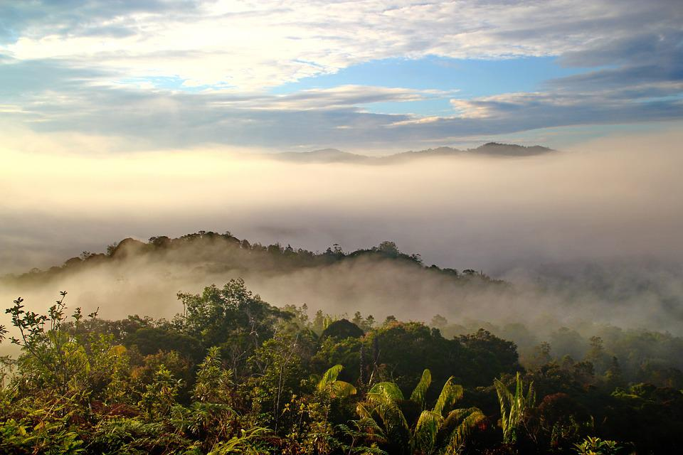 Borneo, tourist