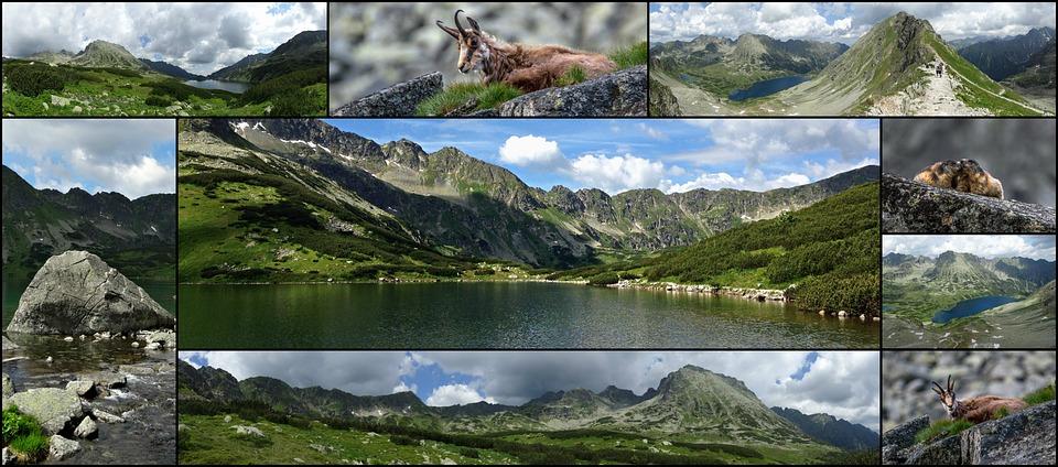 Kolaż, Tatry, Góry, Turystyka, Polska, Krajobraz